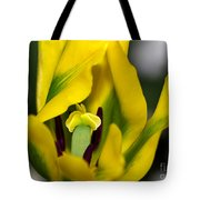 Yellow And Green Tulip Tote Bag