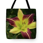 Yellow And Marron Flowering Lily In A Garden Tote Bag
