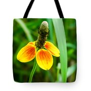Yellow And Orange Clasping Coneflower Tote Bag