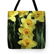 Yellow And Orange Daffodil  #2 Tote Bag