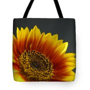Yellow And Orange Gerber Tote Bag