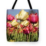 Yellow And Pink Tulips V 2018 Tote Bag