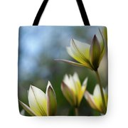 Yellow And Purple Two Tote Bag