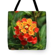 Yellow And Red Flowers On A Branch Tote Bag