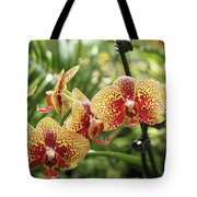 Yellow And Red Spotted Phalaenopsis Orchids Tote Bag