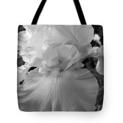 Yellow And White Iris In Bw Tote Bag