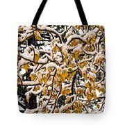 Yellow And White Tote Bag