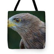Yellow-beaked Kite Tote Bag