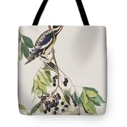 Yellow Bellied Woodpecker Tote Bag