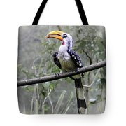 Yellow Billed Hornbill Tote Bag