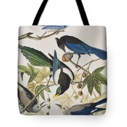 Yellow-billed Magpie Stellers Jay Ultramarine Jay Clark's Crow Tote Bag