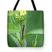 Yellow Black  White Caterpillar Tote Bag