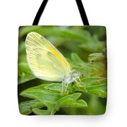 Yellow Butterfly Tote Bag