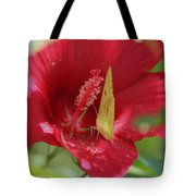Yellow Butterfly On Red Hibiscus Tote Bag
