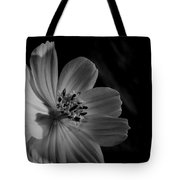 Yellow-bw-1 Tote Bag by Fabio Giannini