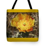 Yellow Cactus Flower On Display Tote Bag