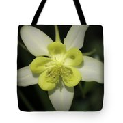 Yellow Columbine Squared 2 Tote Bag