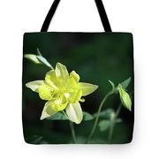 Yellow Columbine Squared Tote Bag