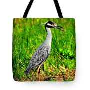 Yellow Crested Night Heron Catches A Fiddler Crab Tote Bag