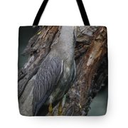 Yellow Crested Night Heron On Log Tote Bag