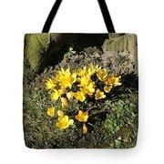 Yellow Crocus 1 Tote Bag