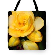 Yellow Crocus Closeup Tote Bag