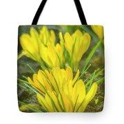 Yellow Crocuses Close Up Tote Bag