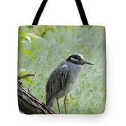 Yellow-crowned Night Heron 1 Tote Bag