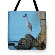 Yellow Crowned Night Heron Rocking It Out Tote Bag