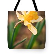 Yellow Daffodil Tote Bag