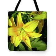 Yellow Day Lilies Tote Bag
