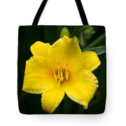 Yellow Daylily Flower Tote Bag