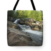 Yellow Dog Falls 2 Tote Bag by Michael Peychich
