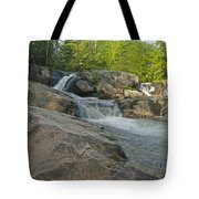 Yellow Dog Falls 4213 Tote Bag