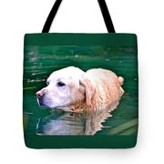 Yellow Dog In Pond Tote Bag