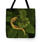 Yellow Drying Leaf With Seeds Tote Bag
