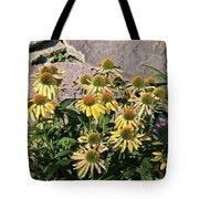 Yellow Echinacea, Straw Flowers Gray Stone Background 2 9132017  Tote Bag