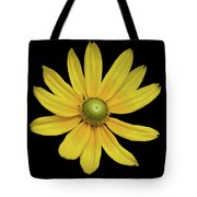 Yellow Eyed Daisy In Black Tote Bag