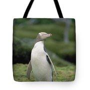 Yellow-eyed Penguin Albino Tote Bag