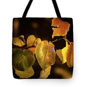 Yellow Fall Leaves Tote Bag