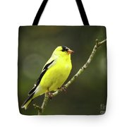 Yellow Finch Perching Tote Bag