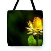 Yellow Flower 7 Tote Bag