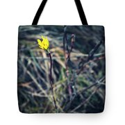 Yellow Flower In Dry Autumn Grass Tote Bag