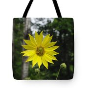 Yellow Flower In Woods Tote Bag
