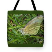 Yellow Fringed Sulphur Butterfly In Grass Blades  Image No 1  Indiana Tote Bag
