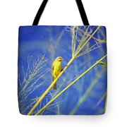 Yellow Fronted Canary Tote Bag