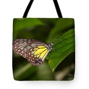 Yellow Glassy Tiger Butterfly Tote Bag
