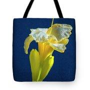 Yellow Glue Blue #f9 Tote Bag