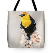 Yellow Headed Blackbird #4 Tote Bag