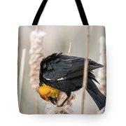 Yellow Headed Blackbird #7 Tote Bag